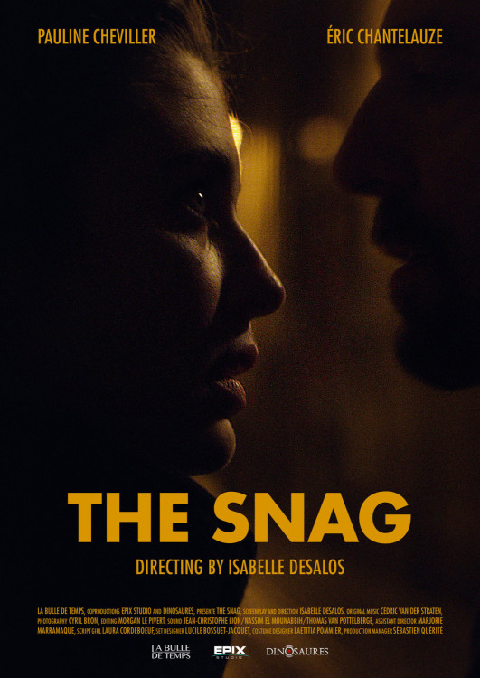 The Snag - poster
